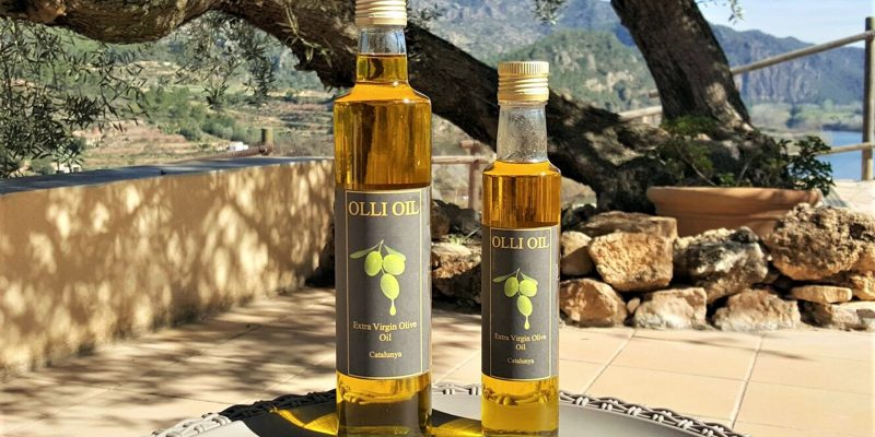 Ollie Oil and Olive tree